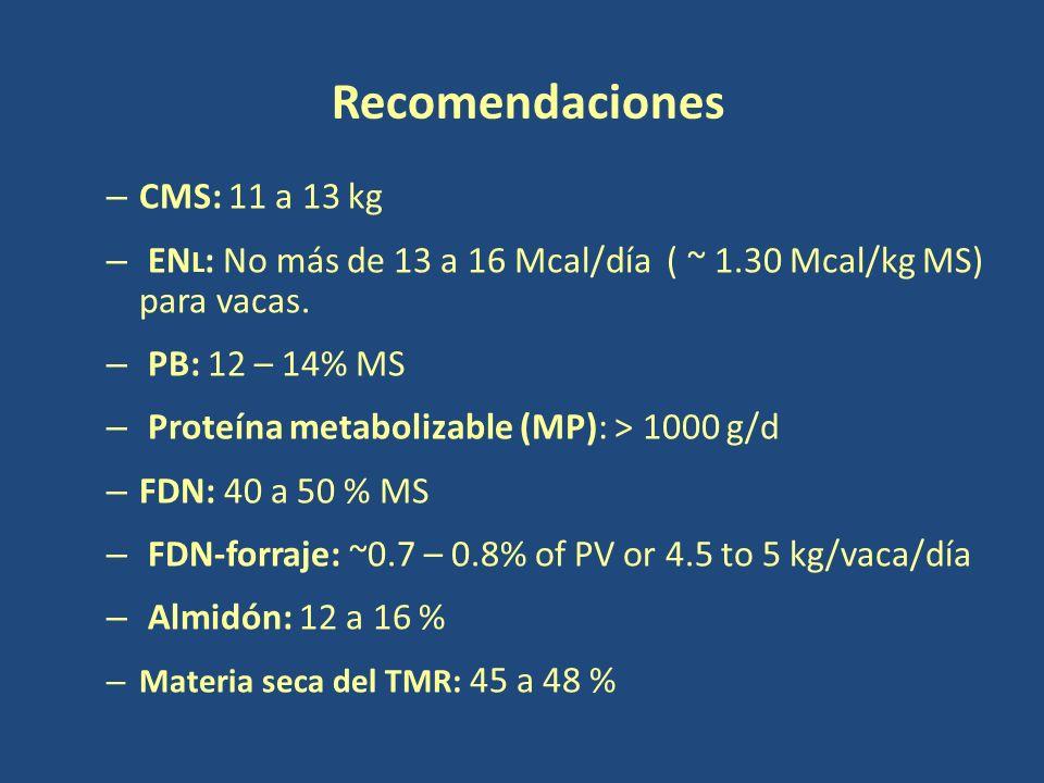 Recomendaciones CMS: 11 a 13 kg
