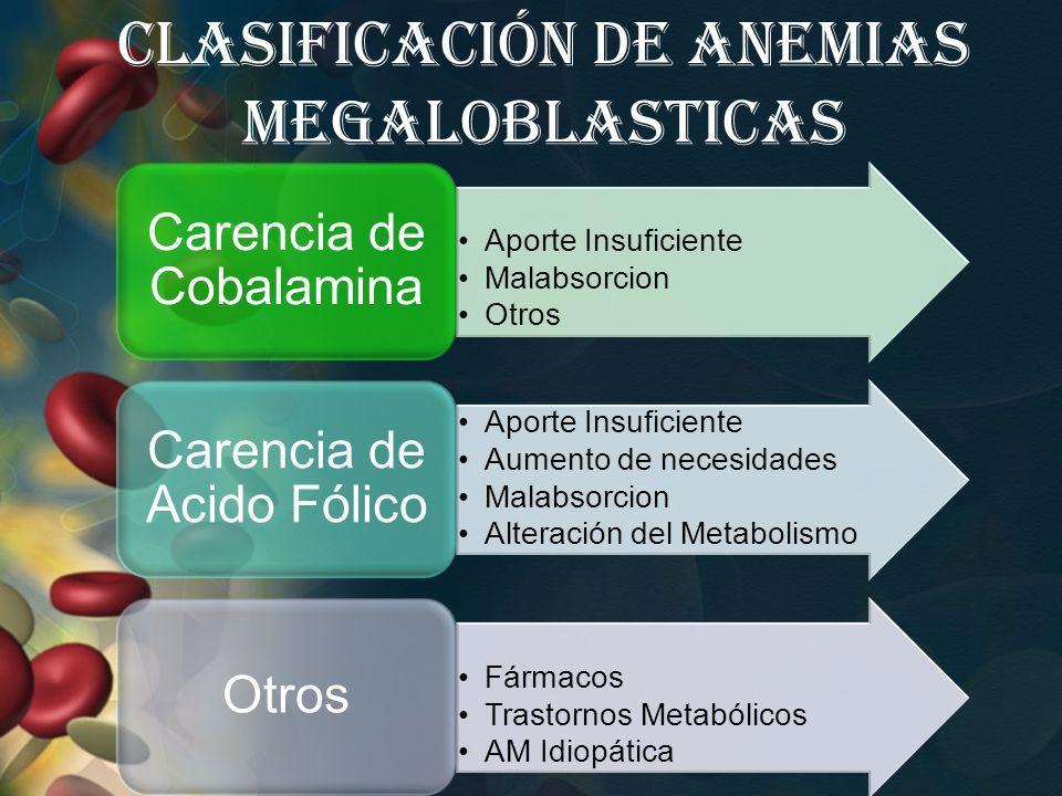 Clasificación de Anemias Megaloblasticas
