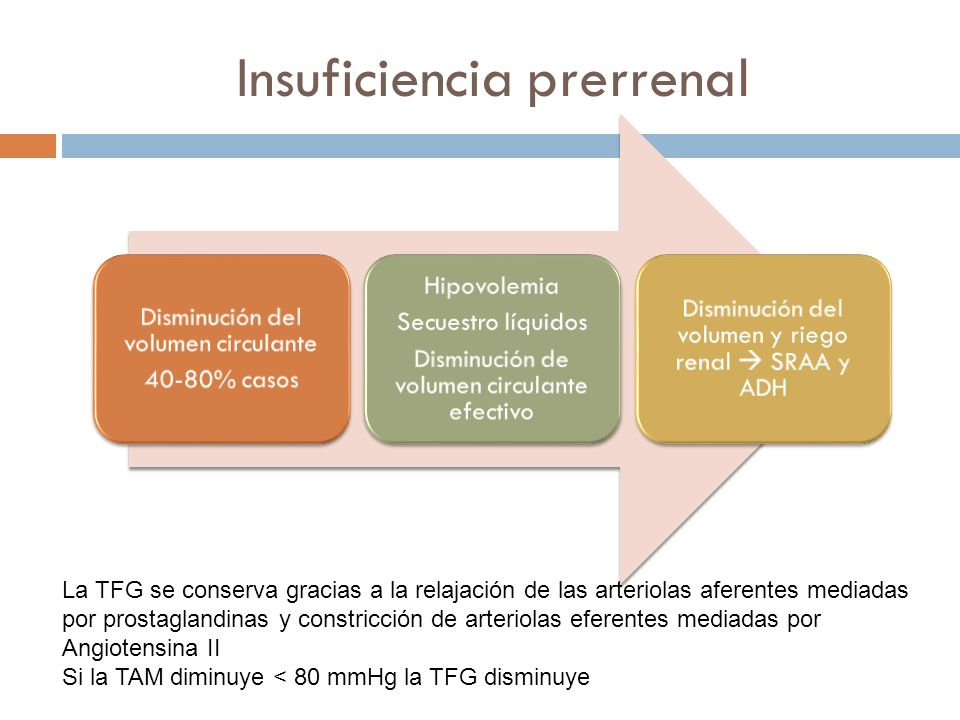 Insuficiencia prerrenal