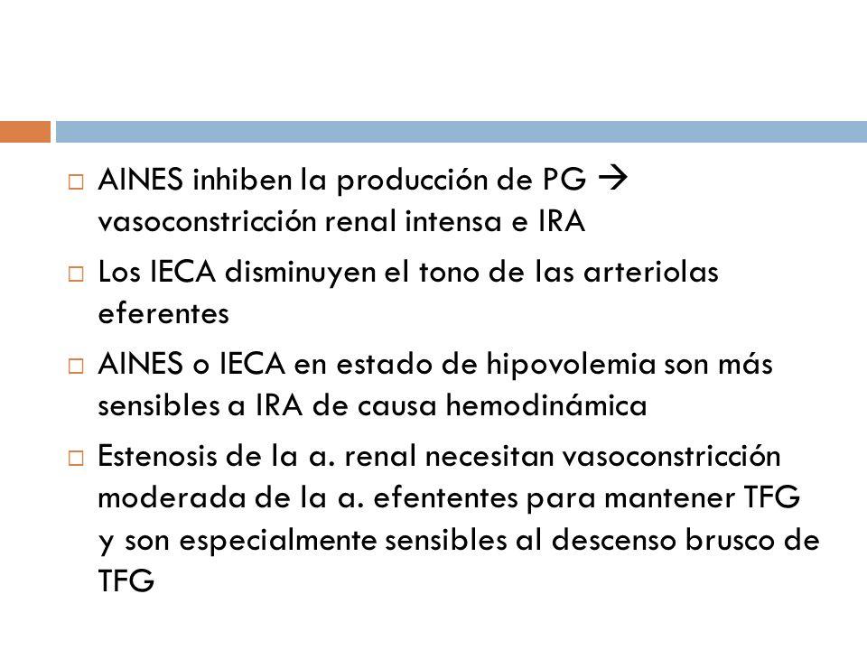 Los IECA disminuyen el tono de las arteriolas eferentes