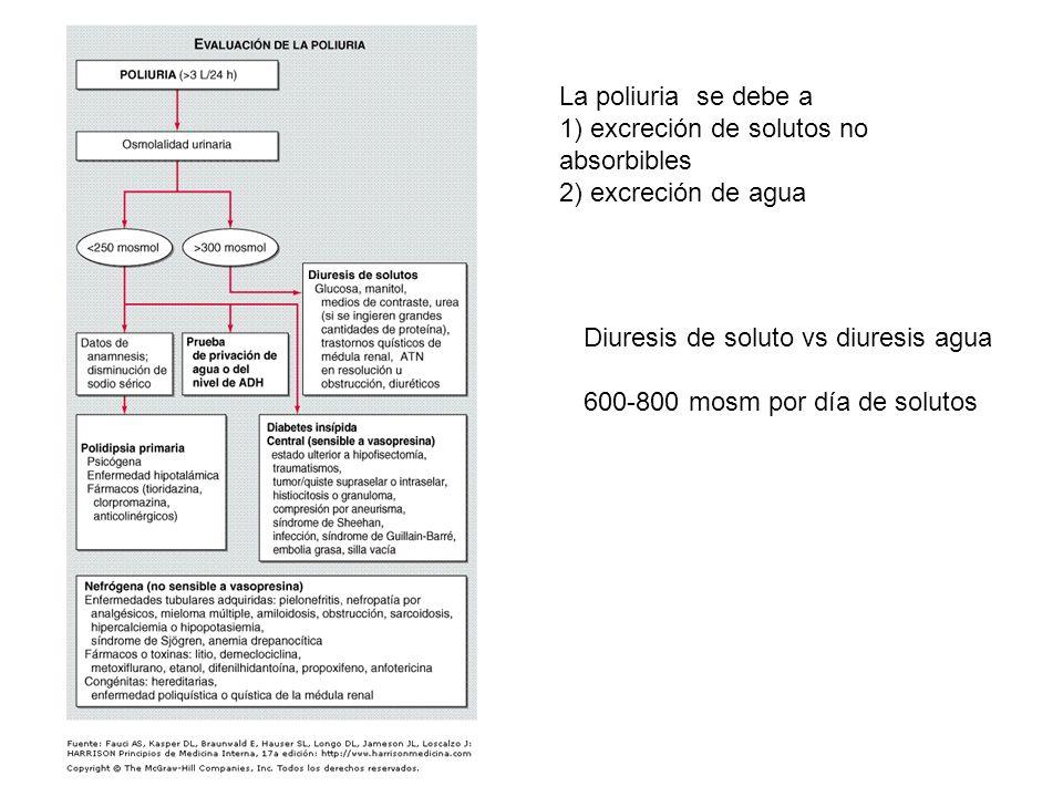 La poliuria se debe a 1) excreción de solutos no absorbibles. 2) excreción de agua. Diuresis de soluto vs diuresis agua.