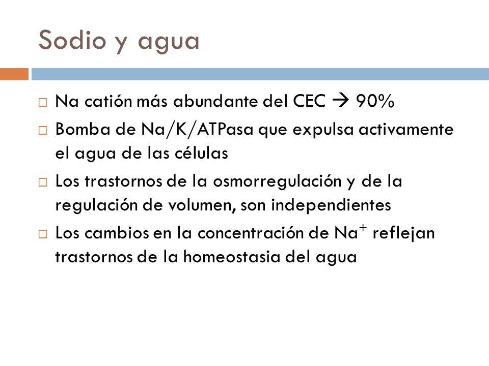 Sodio y agua Na catión más abundante del CEC  90%