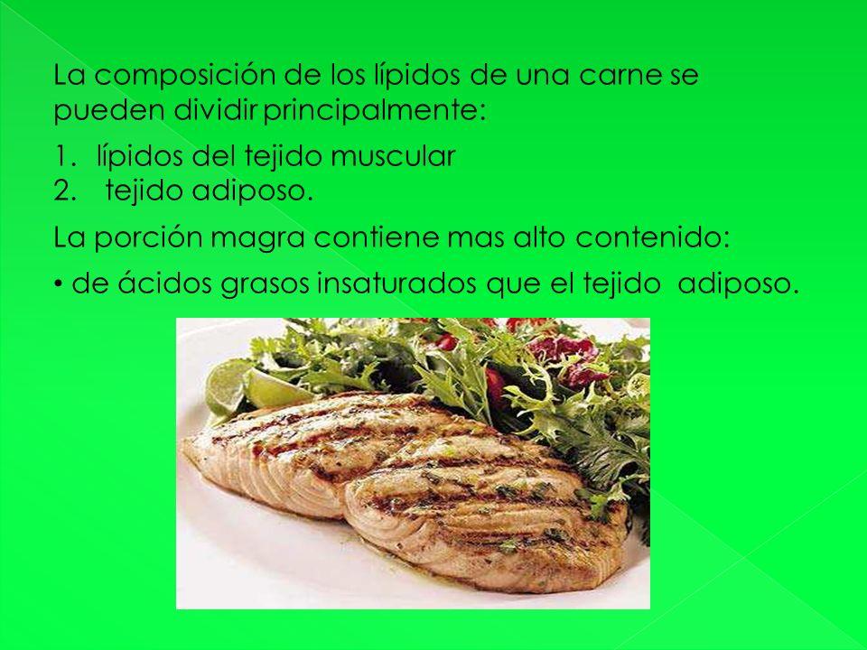 La composición de los lípidos de una carne se pueden dividir principalmente: