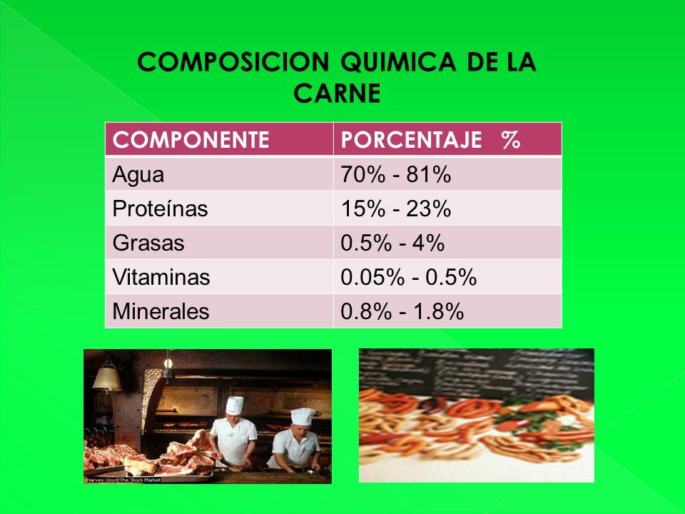 COMPOSICION QUIMICA DE LA CARNE