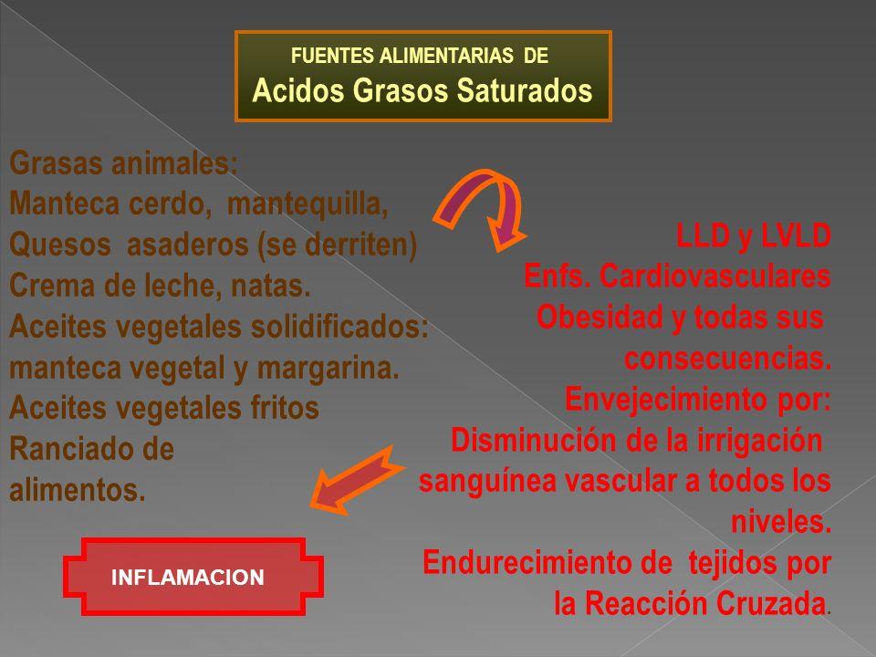 FUENTES ALIMENTARIAS DE Acidos Grasos Saturados