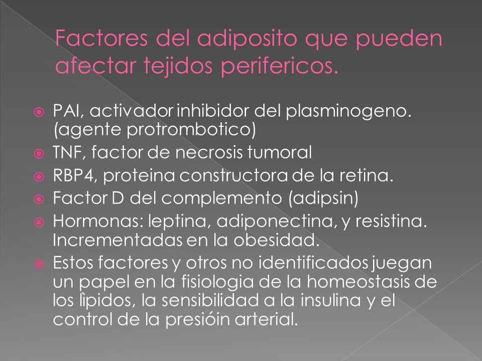 Factores del adiposito que pueden afectar tejidos perifericos.