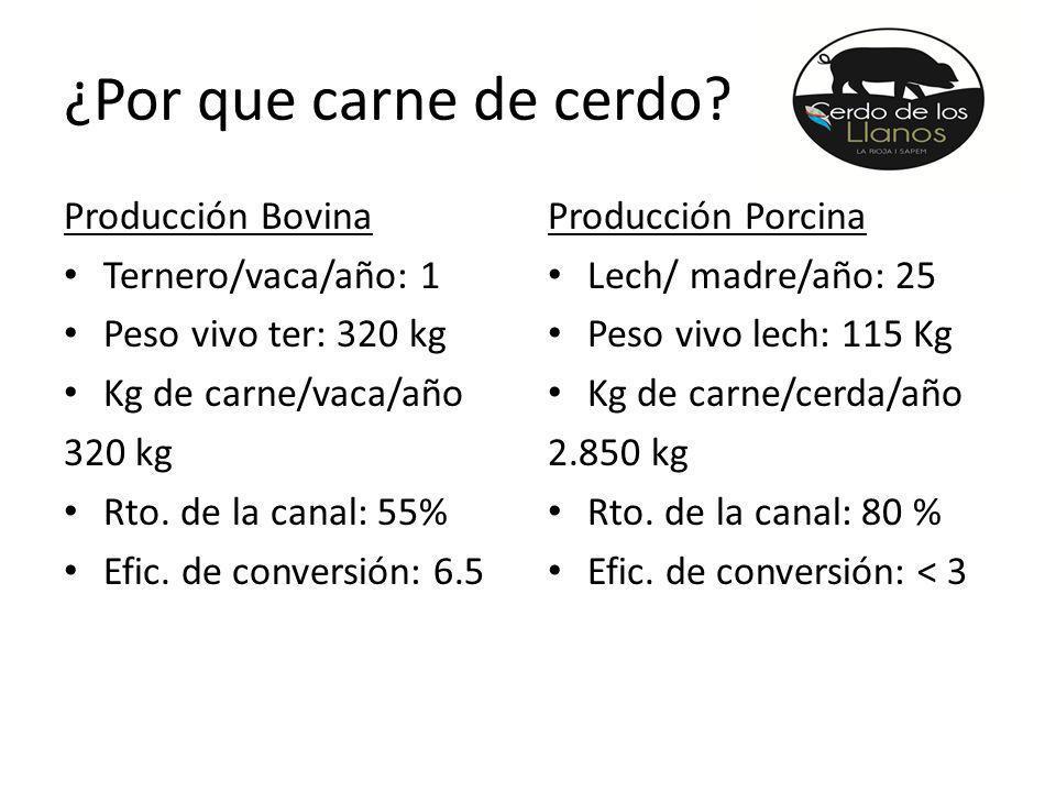 ¿Por que carne de cerdo Producción Bovina Ternero/vaca/año: 1
