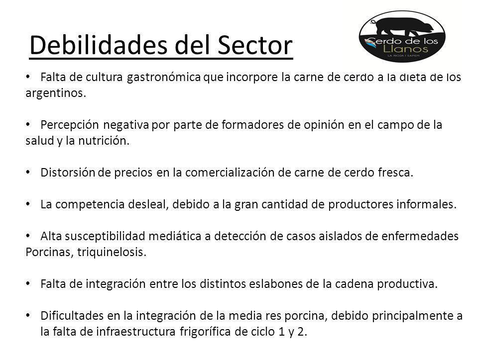 Debilidades del Sector