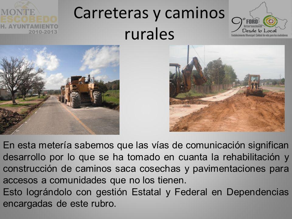 Carreteras y caminos rurales