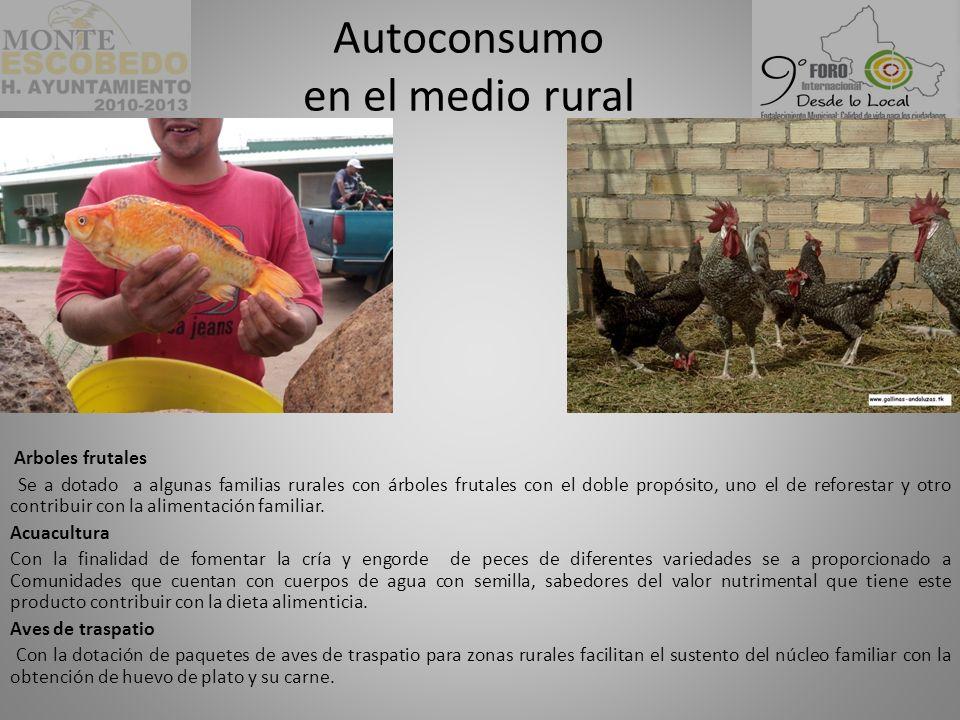 Autoconsumo en el medio rural Arboles frutales