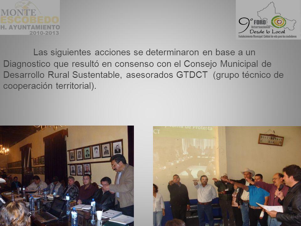 Las siguientes acciones se determinaron en base a un Diagnostico que resultó en consenso con el Consejo Municipal de Desarrollo Rural Sustentable, asesorados GTDCT (grupo técnico de cooperación territorial).