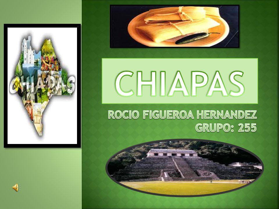 ROCIO FIGUEROA HERNANDEZ GRUPO: 255