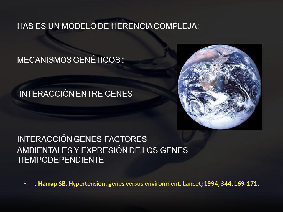 HAS ES UN MODELO DE HERENCIA COMPLEJA: