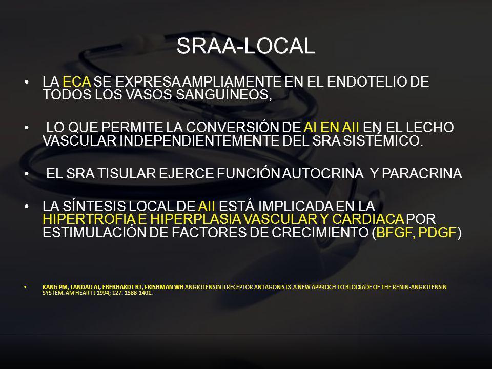 SRAA-LOCAL LA ECA SE EXPRESA AMPLIAMENTE EN EL ENDOTELIO DE TODOS LOS VASOS SANGUÍNEOS,