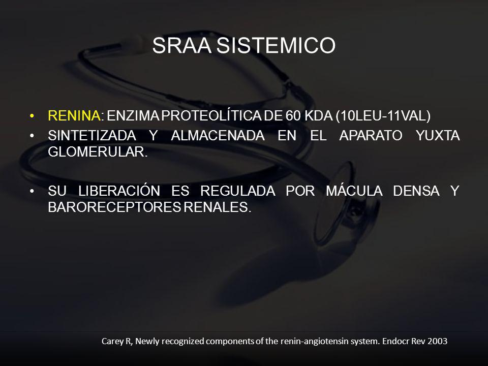 SRAA SISTEMICO RENINA: ENZIMA PROTEOLÍTICA DE 60 KDA (10LEU-11VAL)