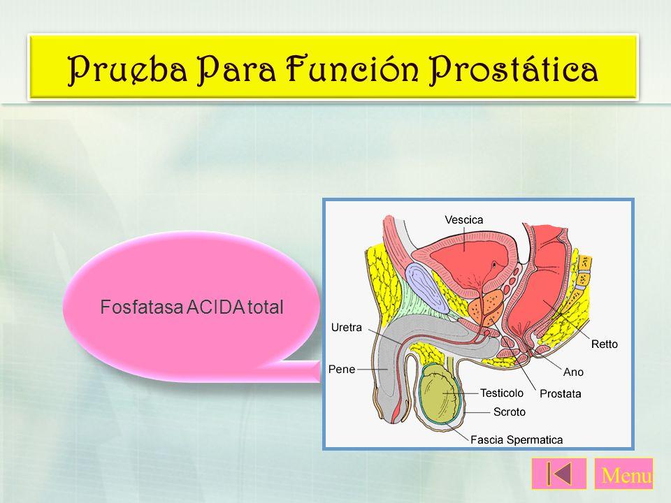 Prueba Para Función Prostática