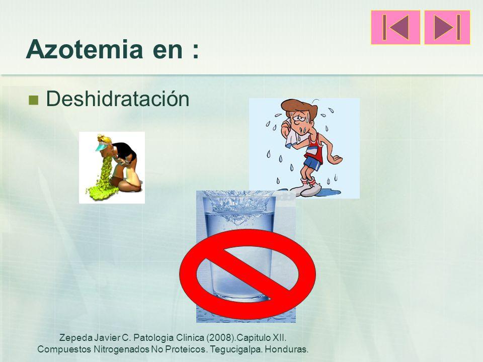 Azotemia en : Deshidratación