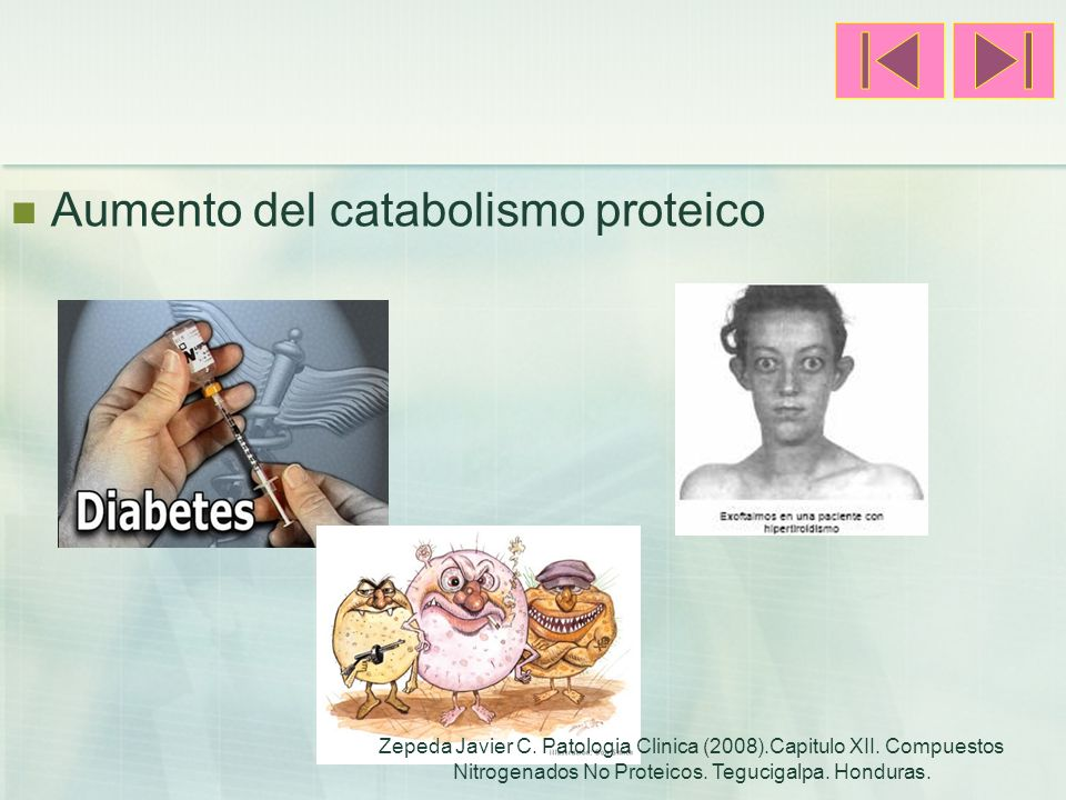 Aumento del catabolismo proteico