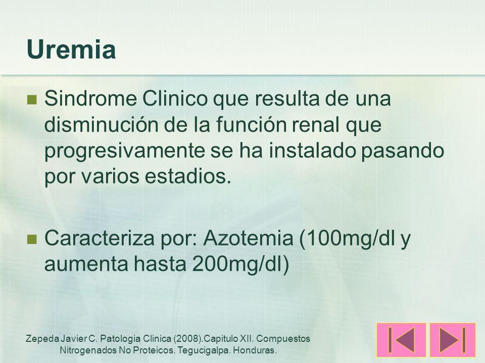 Uremia Sindrome Clinico que resulta de una disminución de la función renal que progresivamente se ha instalado pasando por varios estadios.