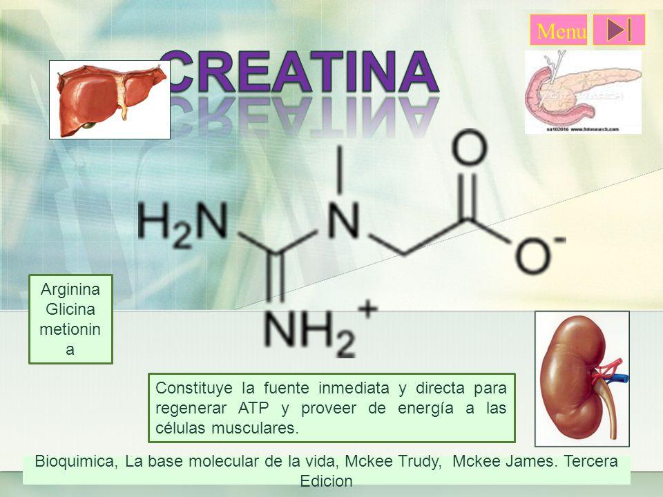 CREATINA Menu Arginina Glicina metionina