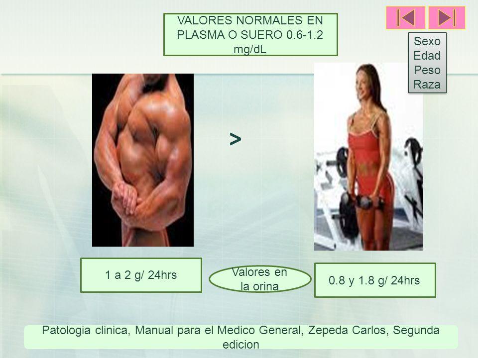 VALORES NORMALES EN PLASMA O SUERO 0.6-1.2 mg/dL