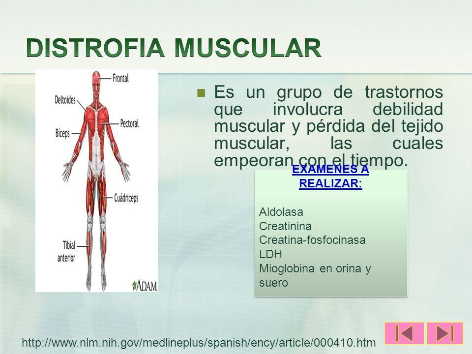 DISTROFIA MUSCULAR Es un grupo de trastornos que involucra debilidad muscular y pérdida del tejido muscular, las cuales empeoran con el tiempo.
