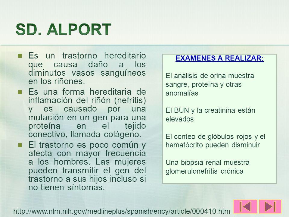 SD. ALPORT Es un trastorno hereditario que causa daño a los diminutos vasos sanguíneos en los riñones.