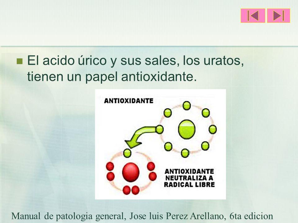 El acido úrico y sus sales, los uratos, tienen un papel antioxidante.