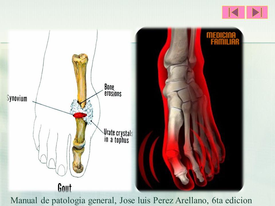 Manual de patologia general, Jose luis Perez Arellano, 6ta edicion
