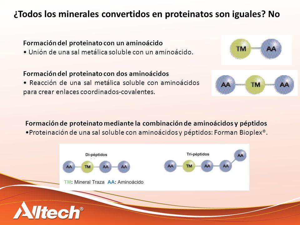 ¿Todos los minerales convertidos en proteinatos son iguales No