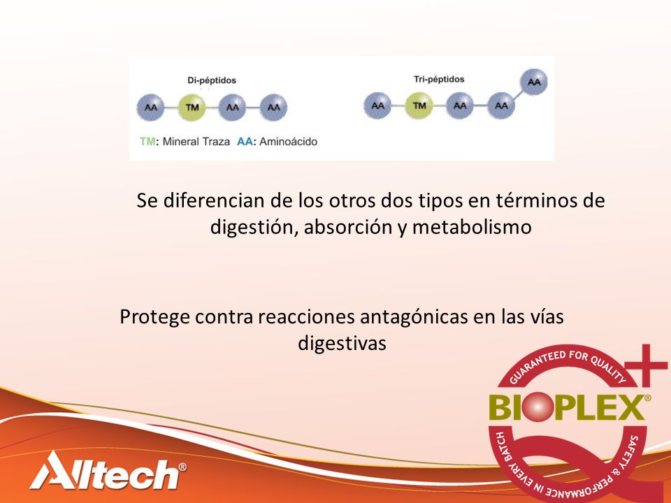 Protege contra reacciones antagónicas en las vías digestivas