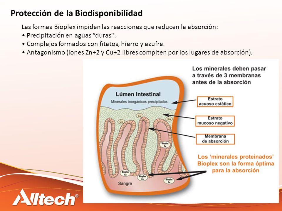 Protección de la Biodisponibilidad