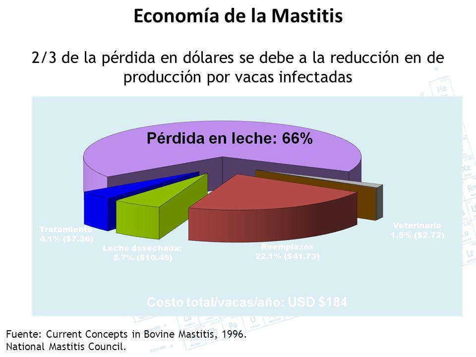 Economía de la Mastitis 2/3 de la pérdida en dólares se debe a la reducción en de producción por vacas infectadas