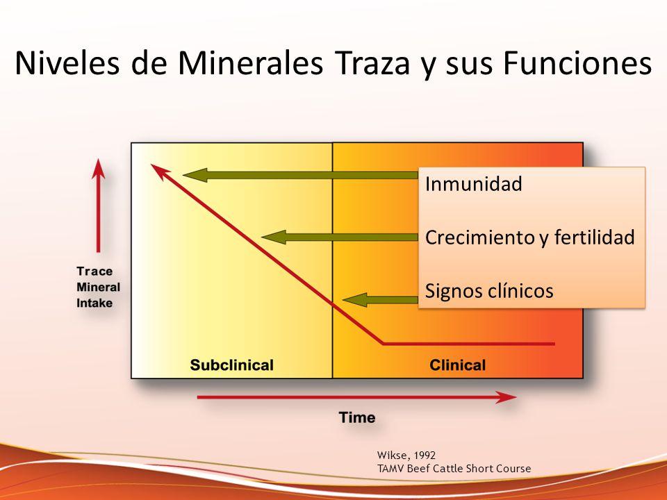 Niveles de Minerales Traza y sus Funciones