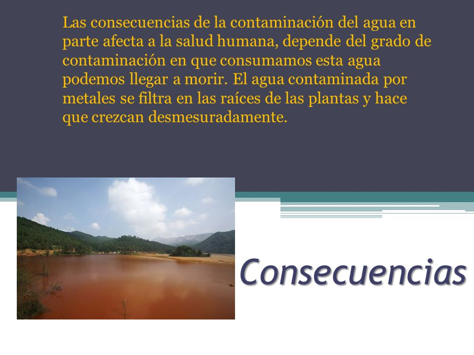 Las consecuencias de la contaminación del agua en parte afecta a la salud humana, depende del grado de contaminación en que consumamos esta agua podemos llegar a morir. El agua contaminada por metales se filtra en las raíces de las plantas y hace que crezcan desmesuradamente.