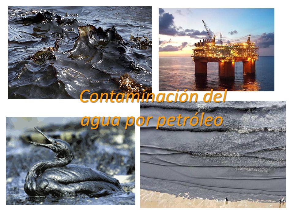 Contaminación del agua por petróleo.