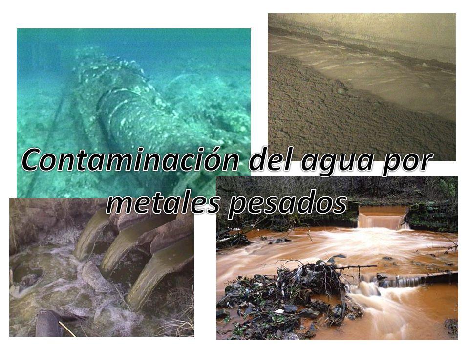 Contaminación del agua por metales pesados