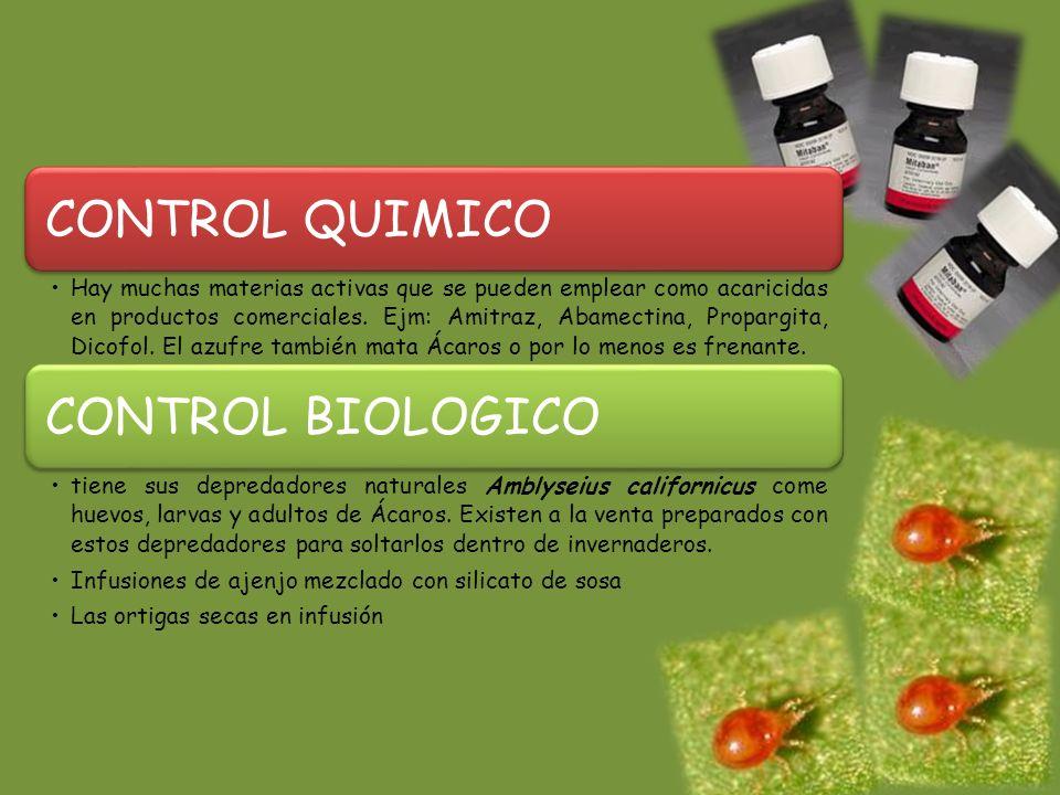 CONTROL QUIMICO CONTROL BIOLOGICO