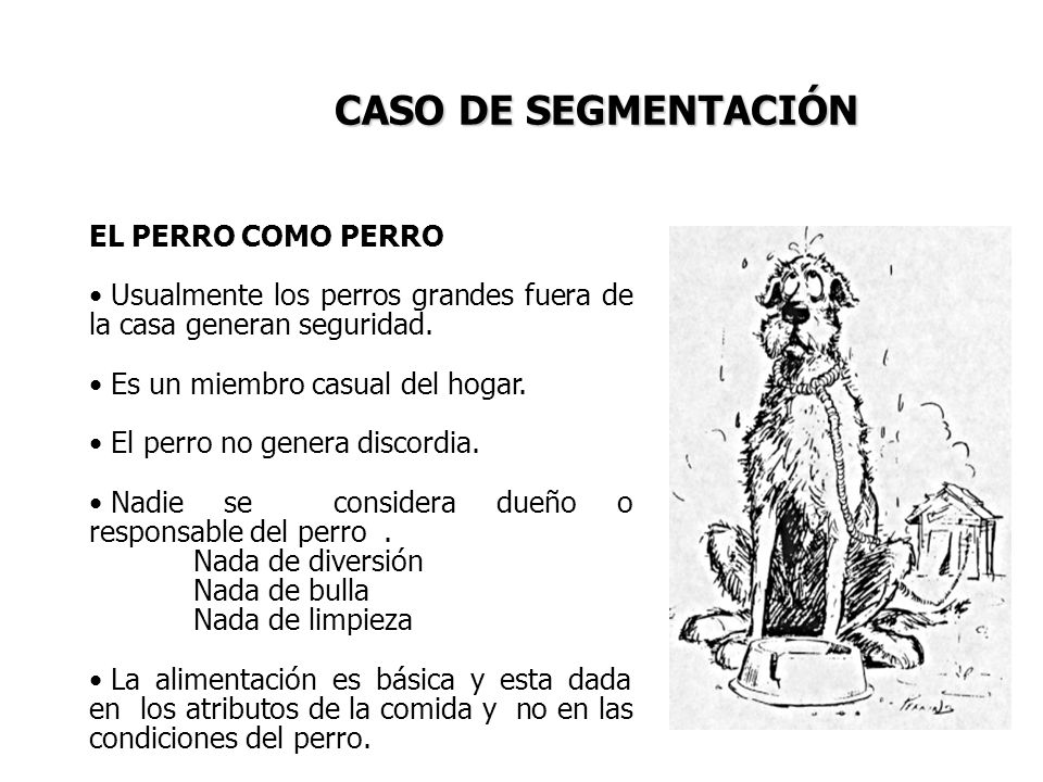 CASO DE SEGMENTACIÓN EL PERRO COMO PERRO
