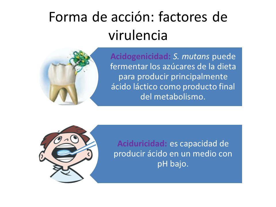 Forma de acción: factores de virulencia