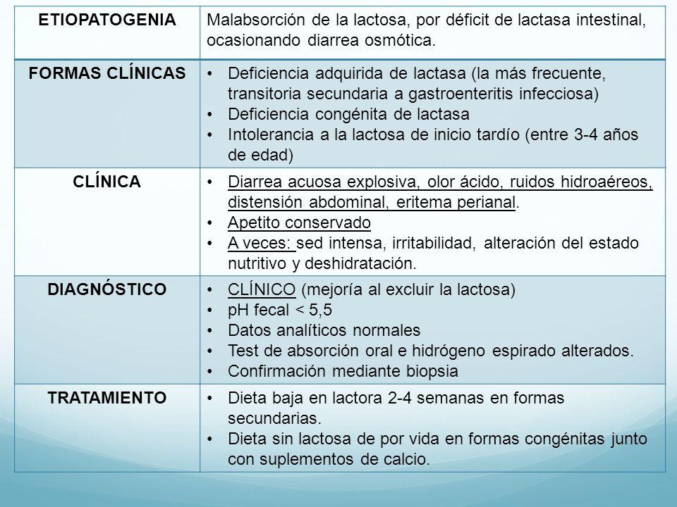 ETIOPATOGENIA Malabsorción de la lactosa, por déficit de lactasa intestinal, ocasionando diarrea osmótica.