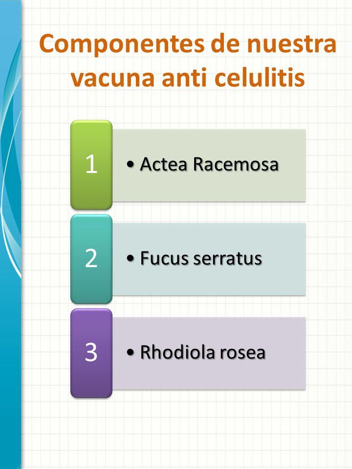 Componentes de nuestra vacuna anti celulitis