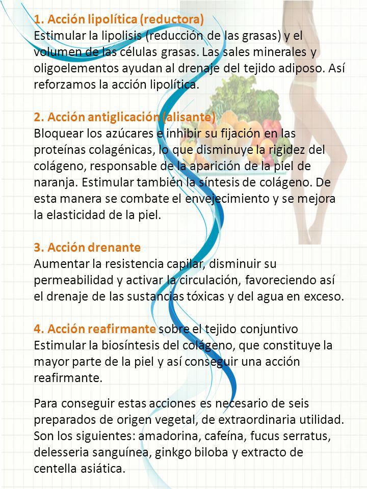 1. Acción lipolítica (reductora)