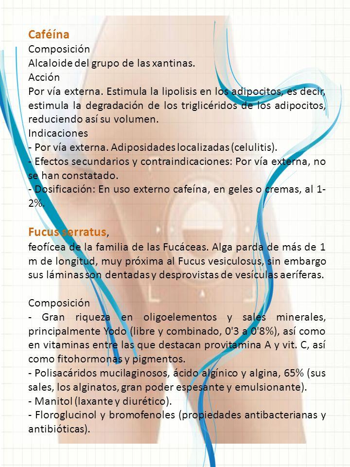 Caféína Fucus serratus, Composición