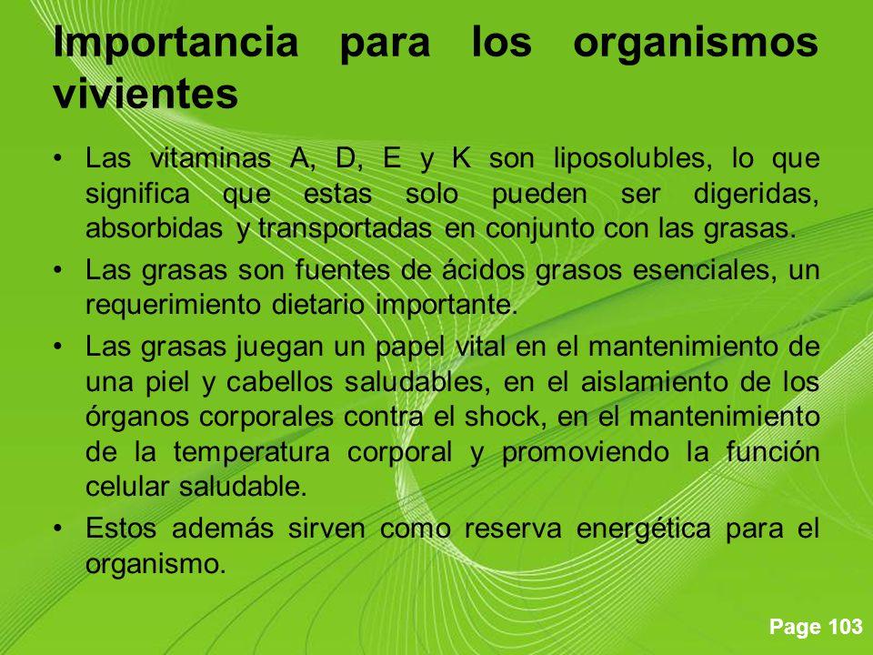 Importancia para los organismos vivientes