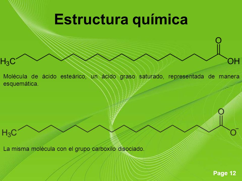 Estructura química Molécula de ácido esteárico, un ácido graso saturado, representada de manera esquemática.