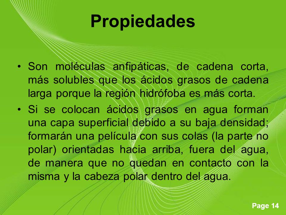 Propiedades Son moléculas anfipáticas, de cadena corta, más solubles que los ácidos grasos de cadena larga porque la región hidrófoba es más corta.