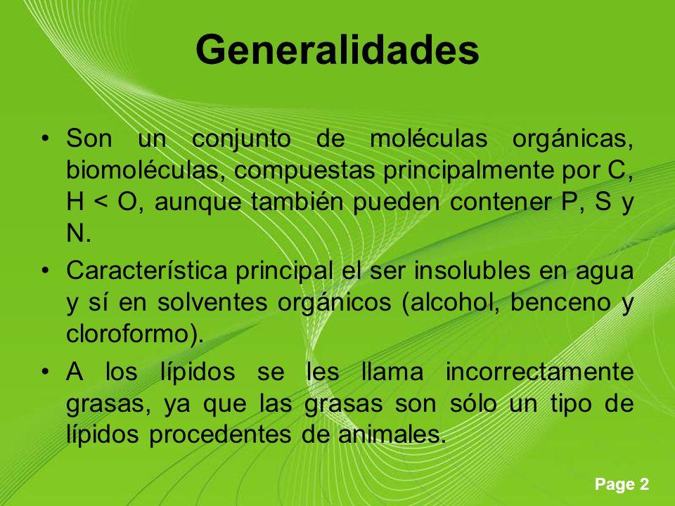 Generalidades Son un conjunto de moléculas orgánicas, biomoléculas, compuestas principalmente por C, H < O, aunque también pueden contener P, S y N.