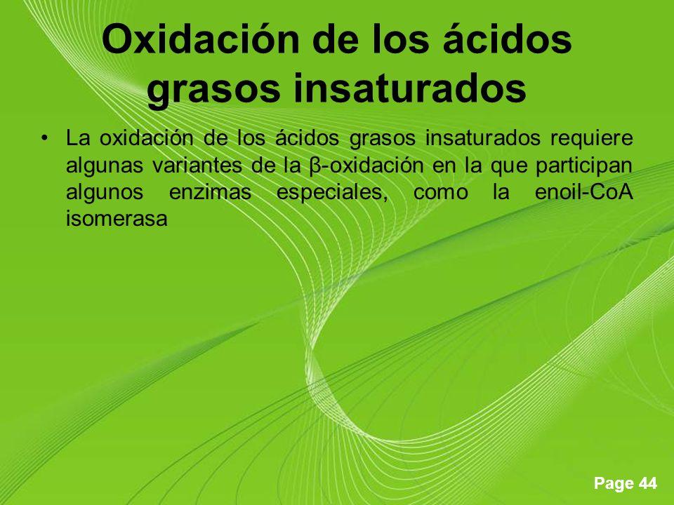 Oxidación de los ácidos grasos insaturados