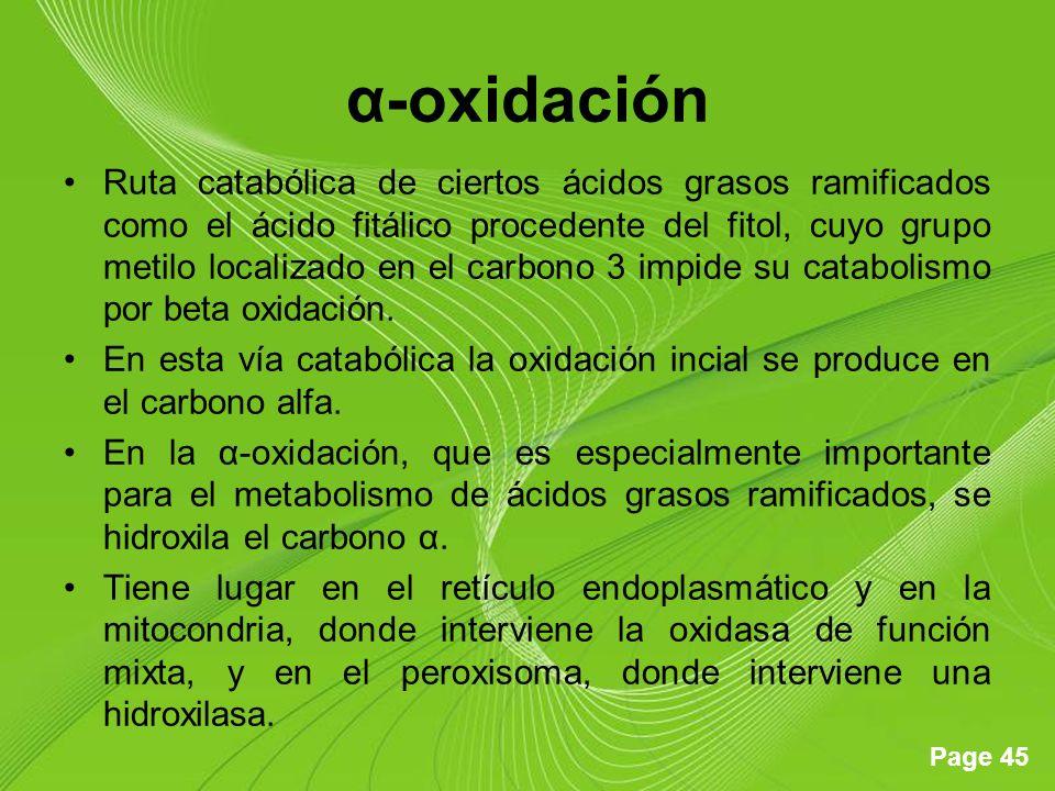 α-oxidación